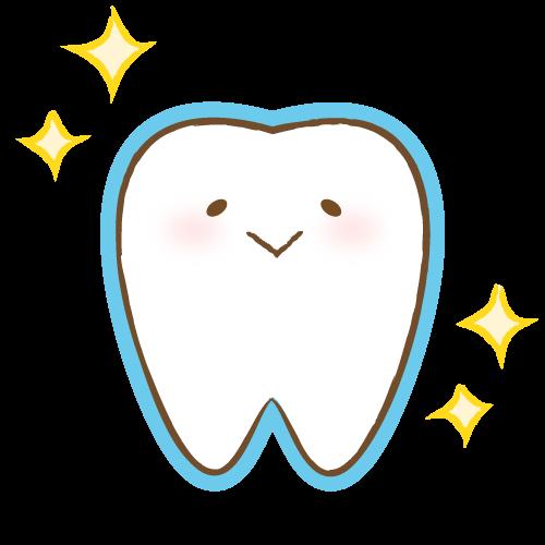 フッ素コーティングした歯のイラスト